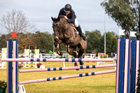 Arena 1 Class 1.1 FEI World Jumping Challenge