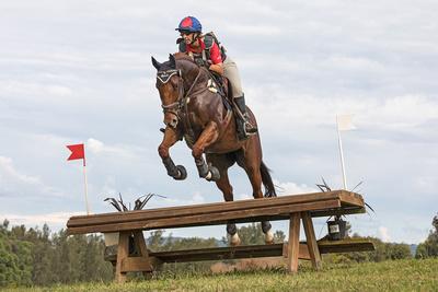 Equestriad 2017